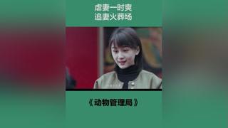 #动物管理局 #陈赫 #王子文 你有没有为谁奋不顾身过? #宅家dou剧场