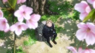 世界最浪漫的差事!二十四小时监视樱花