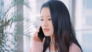 杜晓苏接到刘总电话