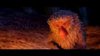 一只霸道又温柔的猴子,表情丰富堪比表情包,简直成精了