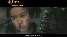 功夫之王 中文主题曲MV 预感