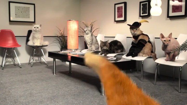 穿靴子的猫 花絮2:试镜花絮