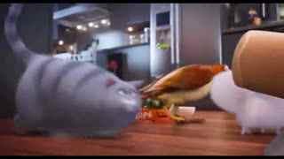 呆萌宠物视频 《爱宠大机密》片段:主人不在家