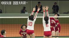 中国女排 女排世界杯特别版视频
