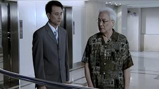 《婚后五年》凌云与董事长说起安丽 还是会离婚的
