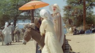 尼罗河畔的滴滴打驴