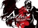 张惠妹 阿密特首次世界巡回演唱会 完整版
