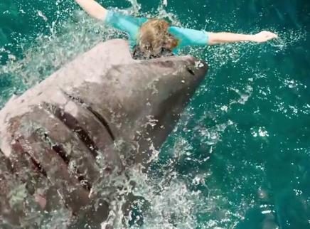 """《鲨海逃生》暗藏""""鲨""""机版预告 星二代震撼肉搏大白鲨"""