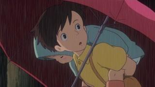 超可爱大龙猫竟然被雨滴逗乐