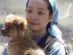 《血狼犬》口碑视频 动物题材以自然揭露人性