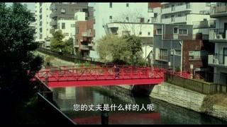 不同的人不同的人生 红色的桥真好看