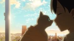 想哭的我戴上了猫的面具 正式预告