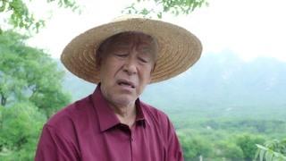 《刘家媳妇》万花将三朵吐了的事情告诉了土地 土地懵了