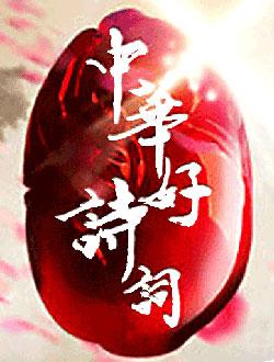 中华好诗词第五季