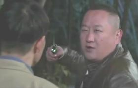 鲜花盛开的村庄-21:包金旺做戏刺死田鸡