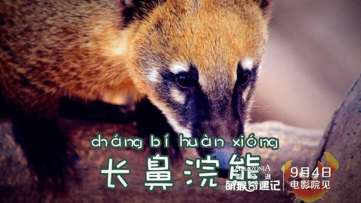 亚马逊萌猴奇遇记 中国先行版1 (中文字幕)