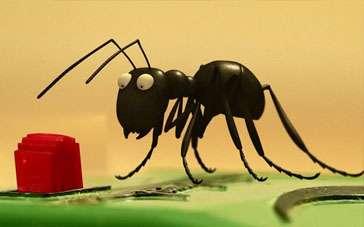 《昆虫总动员》8.22公映 众星力荐欧洲动画王