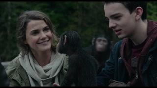 人类与猩猩组成的旅游小队