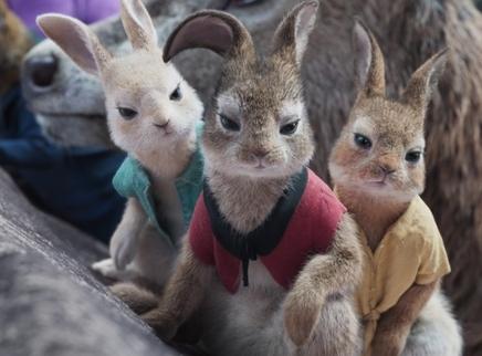 《比得兔2:逃跑计划》萌兔天团激萌登场 治愈不开心