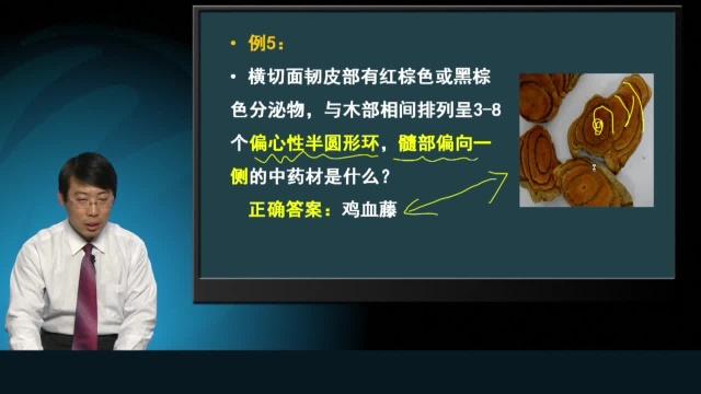 2013执业药师执业中药师深度解析朱鹏飞