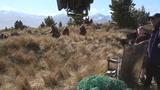 《霍比特人2:史矛革荒漠》制作特辑之新西兰