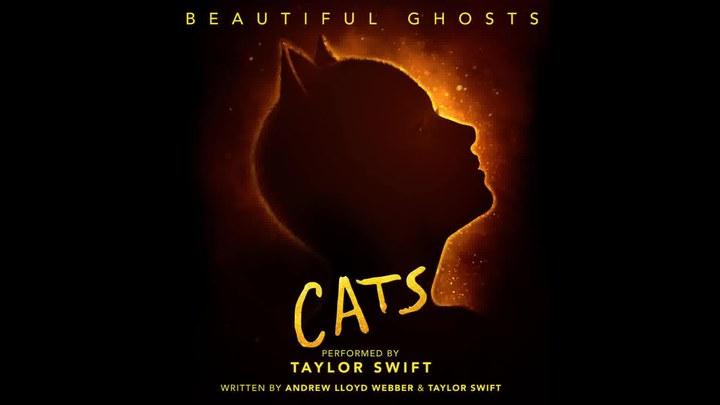猫 MV1:Taylor Swift演唱《Beautiful Ghost》