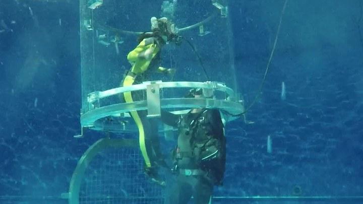 巨齿鲨 花絮1:深海绝境特辑 (中文字幕)