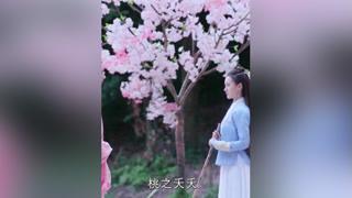 #袁冰妍 盲女向千年桃花树求姻缘,不料妖怪却对她一见钟情 #古装  #小助手