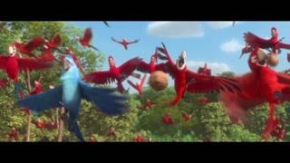 红金刚鹦鹉也赶来帮助蓝金刚鹦鹉与人类斗争