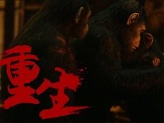 《猩球崛起3》温情守护视频 重温铁血猿王的温情时代