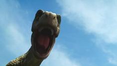恐龙王 特辑视频之恐爪龙