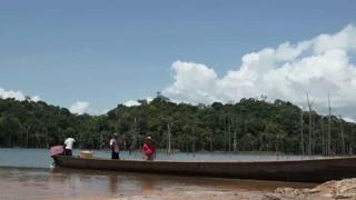 苏里南最特别的地方