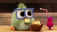 《愤怒的小鸟2》曝光独家番外短片 打开网页随时随地刷萌鸟