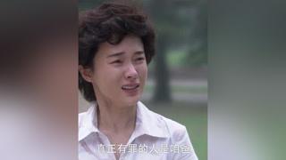 兆欣向哥哥坦白了一切,兆远同意和单红离婚 #风车  #霍思燕