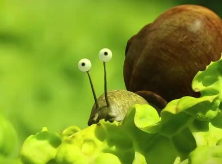 《昆虫总动员》病毒短片4 菜园大作战