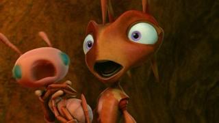 蚂蚁遭殃了  小孩子别乱喷水!