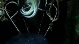 癫狂之旅第1季第2集精彩片段1527049570551