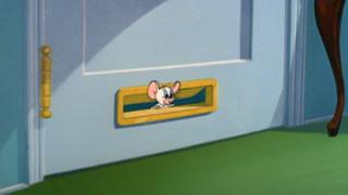 小白鼠真的找到了杰瑞家