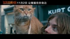 流浪猫鲍勃 终极预告