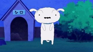 平凡的野原一家住着一只超人小狗  请欣赏小白的华丽蜕变