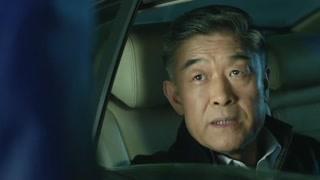 季检察长为何阻止陈海行动?难道他也是个贪官?