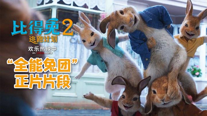 比得兔2:逃跑计划 片段3 (中文字幕)