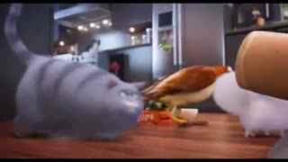 宠物搞笑视频 《爱宠大机密》片段:主人不在家