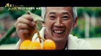 电影《厉害了,我的国》主题曲《新的天地》MV