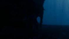 女巫季节 片段之Wolves
