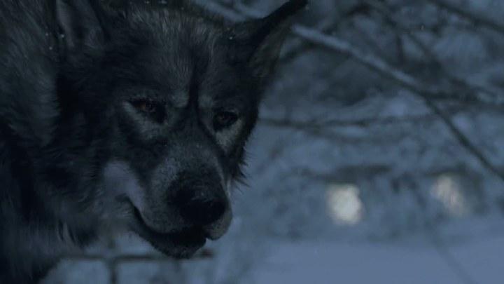 纳尼亚传奇1:狮子、女巫和魔衣橱 美国预告片