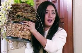 【天使的城】第35集预告-袁姗姗流产