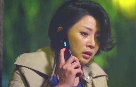 无贼-28:殷桃被主任非礼