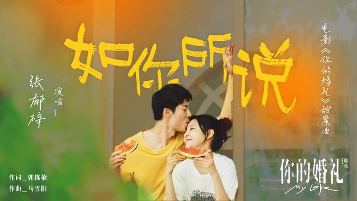 你的婚礼 MV1:《如你所说》 (中文字幕)