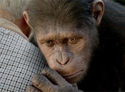 """《猩球崛起》中文片段 """"凯撒""""初到动物收留所"""